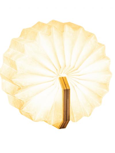 Gingko - smart accordion light - maple