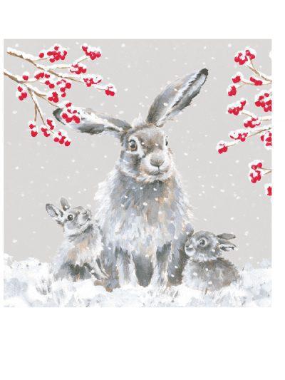 Wrendale christmas card set - rabbits