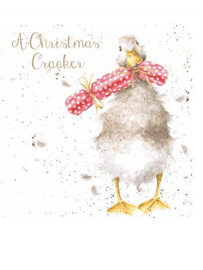 Wrendalr Christmas cards - Christmas crackers