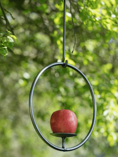 Garden Trading Circular Bird Feeder