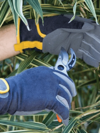 Burgon & Ball gardening gloves in slate corduroy, man is cutting plants in his garden
