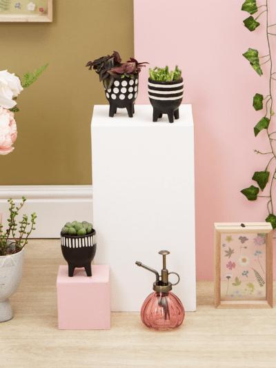 3 black planters on a wooden plinth