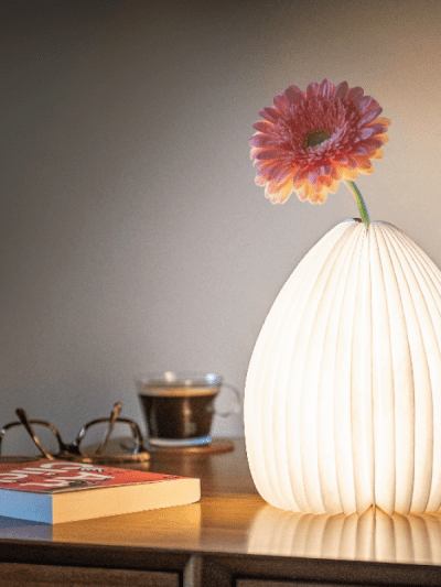 smart vase light with a pink flower in, on a home table