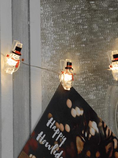festive light up snowman pegs